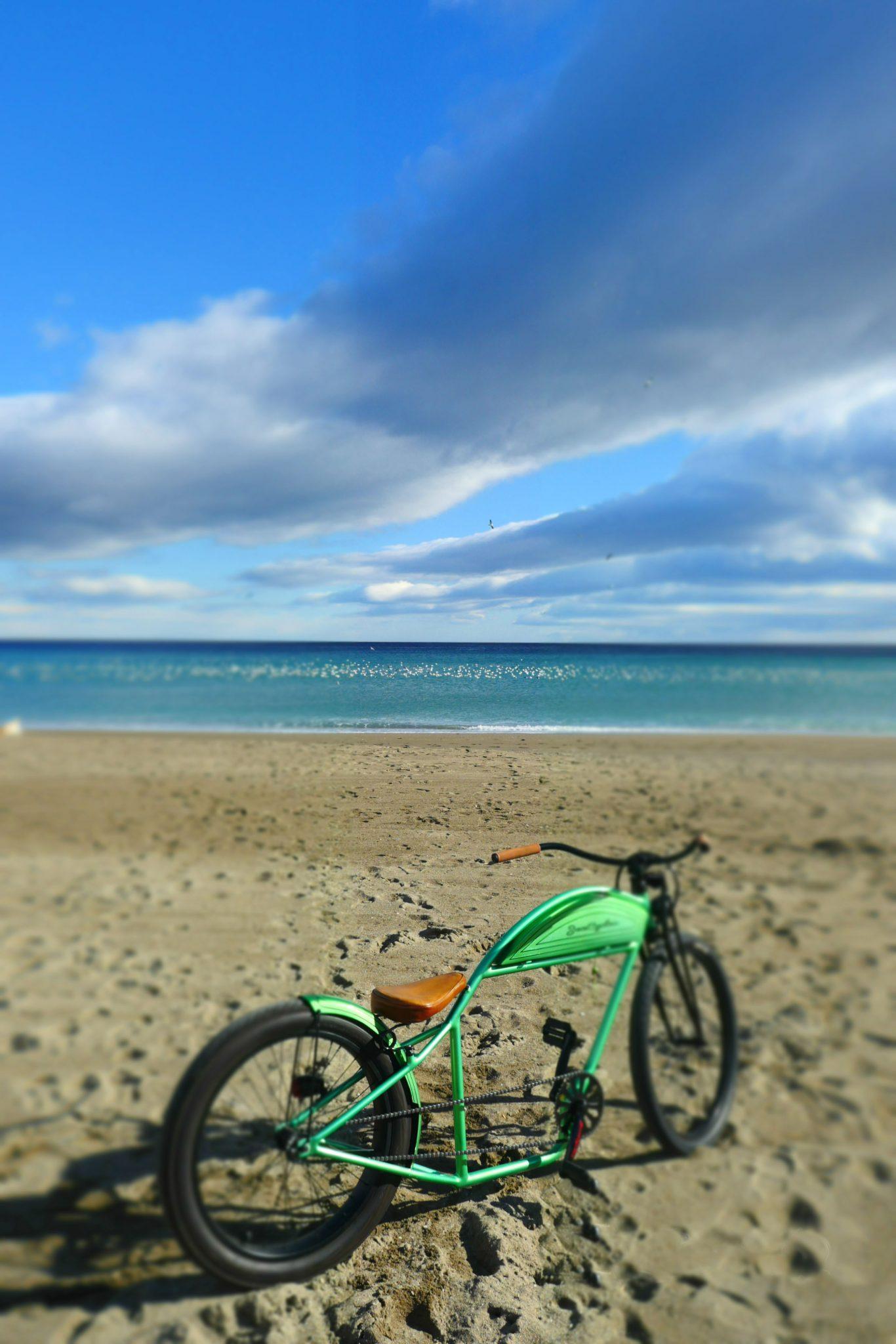 Jan cycles custom bike playa