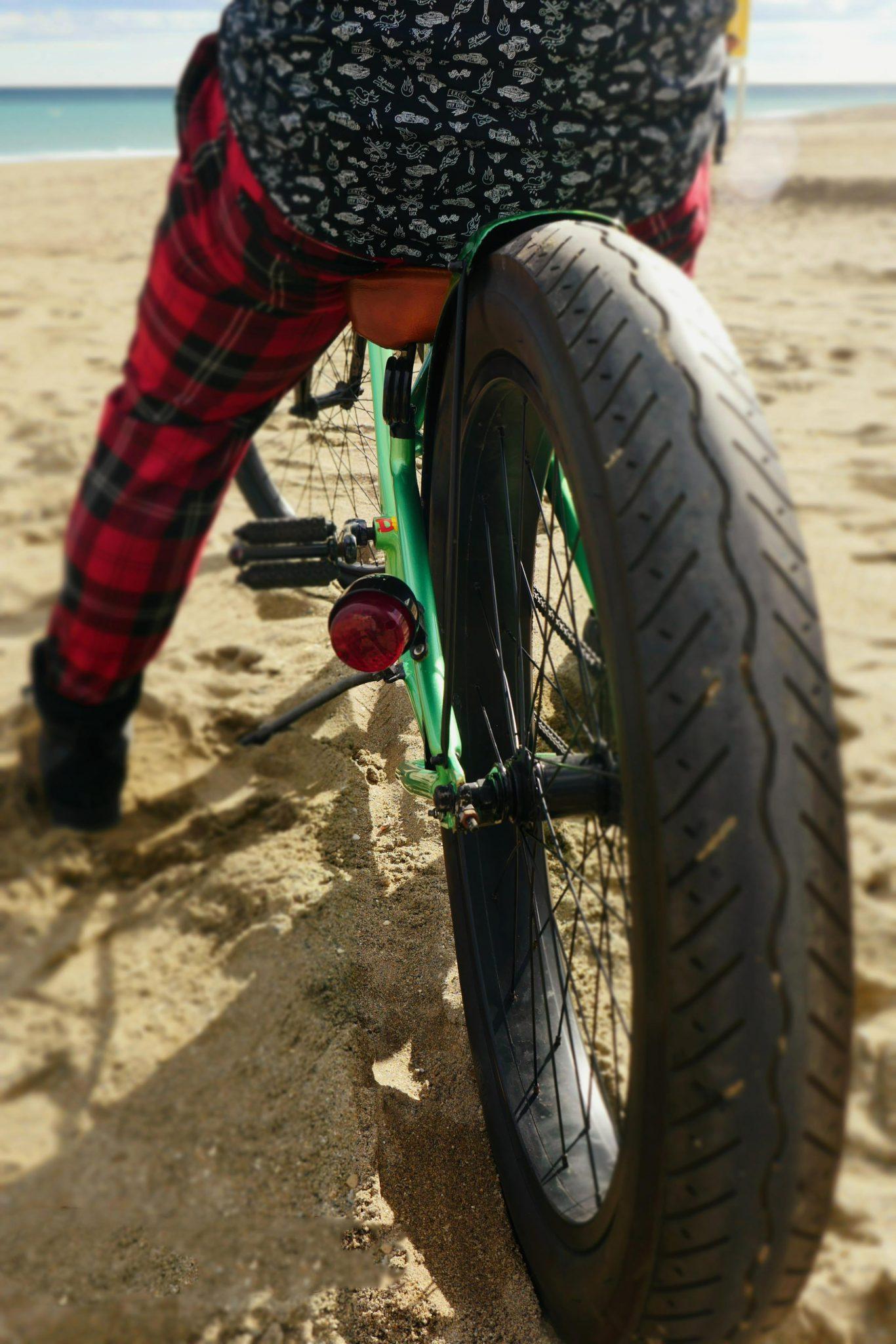 sfDetalle trasera Custom Bike